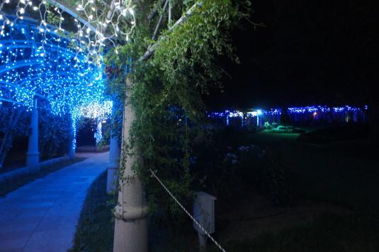 ハイジの村 夏の夜 バラの回廊