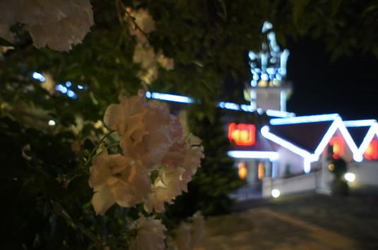 ハイジの村 夏の夜 バラのハイジの村