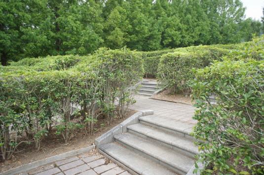 クラフトパーク フラワーメイズ 階段