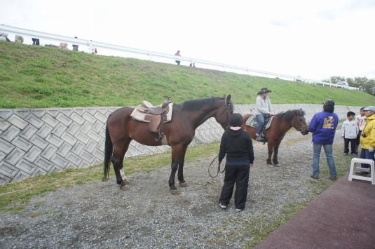 フェスタまきば 引き馬