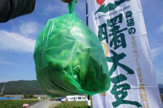 曙大豆 収穫体験 袋