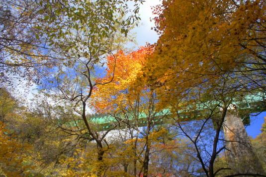 紅葉 吐竜の滝 青い橋