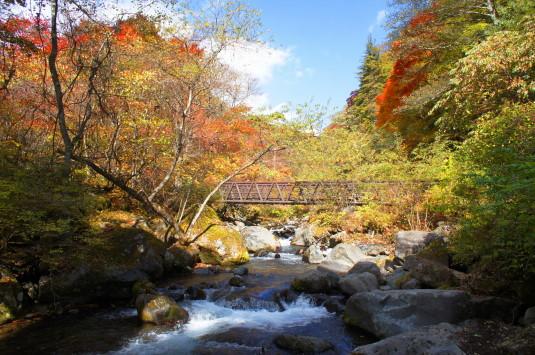 紅葉 吐竜の滝 橋