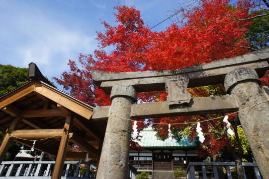 紅葉 信玄堤 三社神社