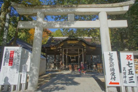 紅葉 武田神社 本殿