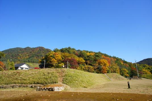 紅葉 武田神社 東側