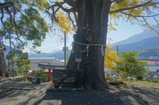 紅葉 南部八幡神社 見下ろす