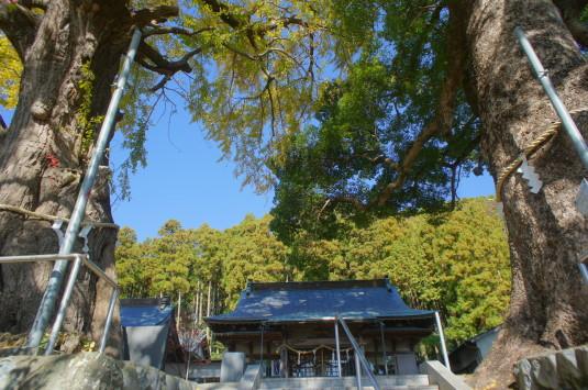 紅葉 南部八幡神社 境内