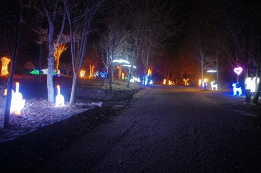 イルミネーション ハイジの村 奥のイルミ