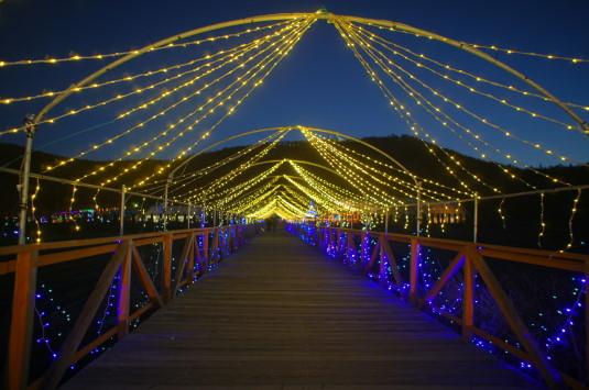 イルミ 山中湖花の都公園 橋