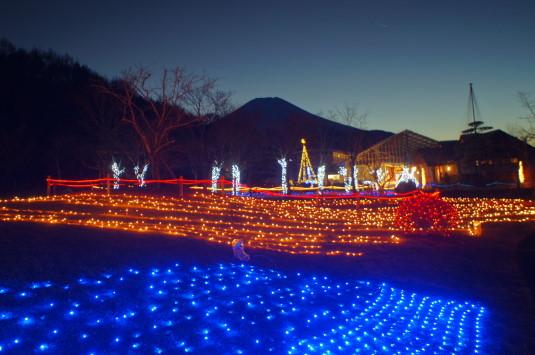 イルミ 山中湖花の都公園 富士山と中
