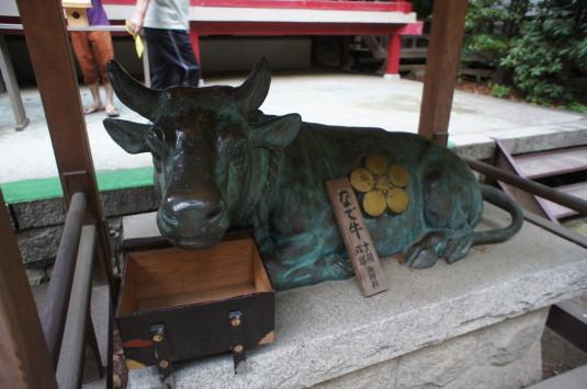 菅田天神社 みそぎ祭り 撫で牛