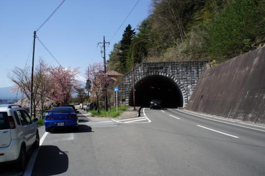 桜 長崎公園 場所
