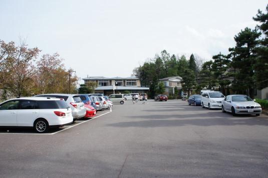 桜 八木崎公園 駐車場1