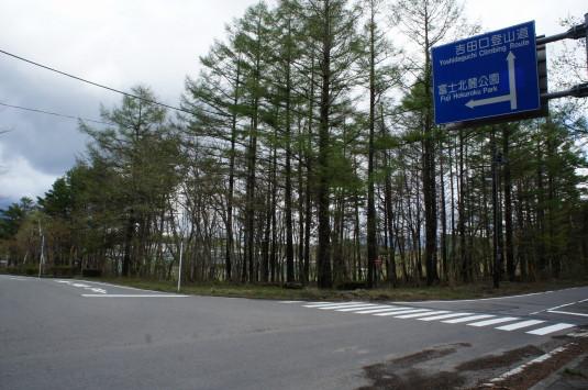 桜 中ノ茶屋 公園