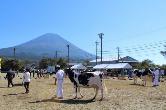富士ヶ嶺ファームフェスタ 外観