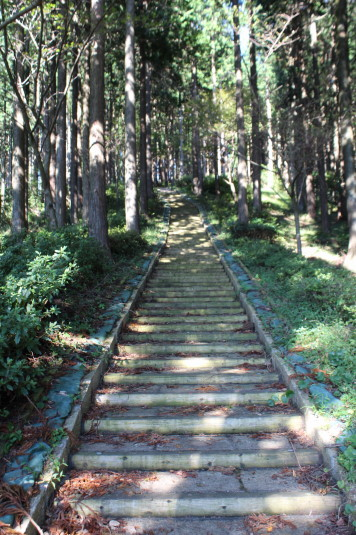白鳥山公園 階段