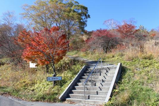 紅葉 美し森 登る