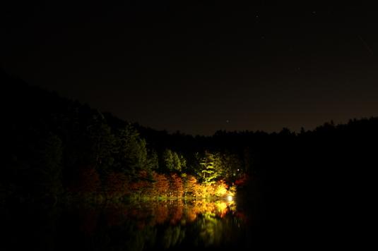 紅葉 伊奈ヶ湖 ライトアップ 星空