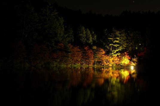 紅葉 伊奈ヶ湖 ライトアップ 外観