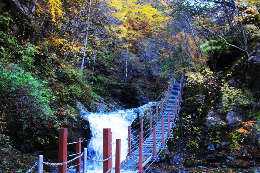 紅葉 石空川渓谷 吊り橋