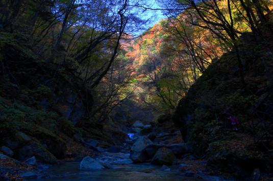 紅葉 石空川渓谷 渓谷
