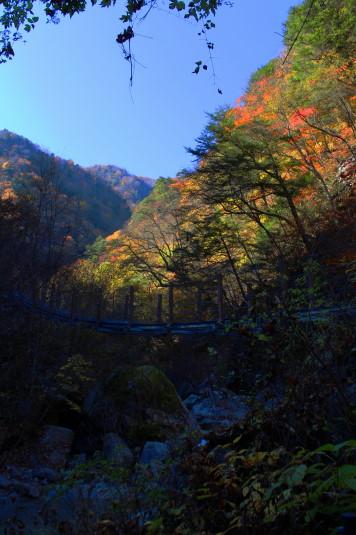 紅葉 石空川渓谷 渓谷と紅葉