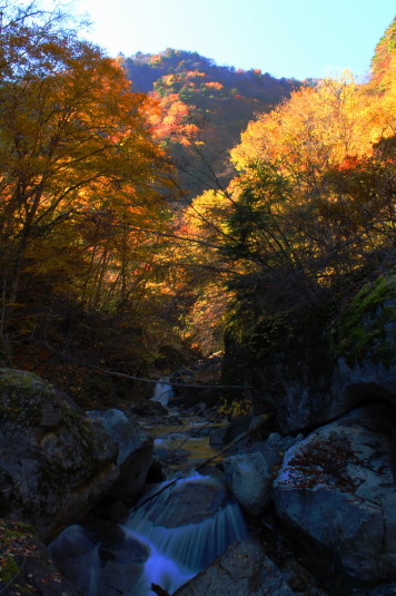 紅葉 石空川渓谷 渓谷と紅葉2