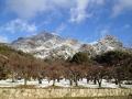 雪の右田ヶ岳2014.1
