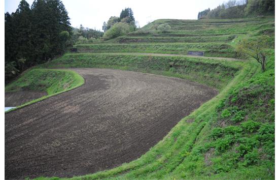 耕起を終えた圃場