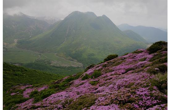 平治岳からの三俣山