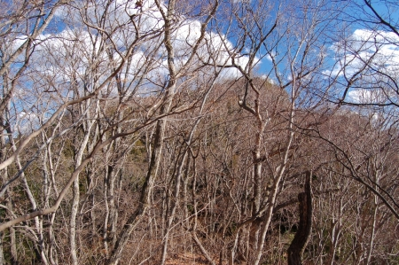 21生瀬富士