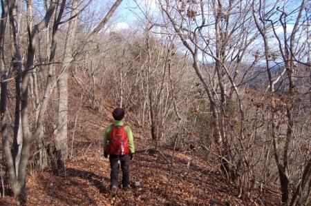 36津室山からの下山路