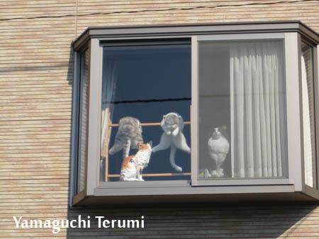 20120704_猫