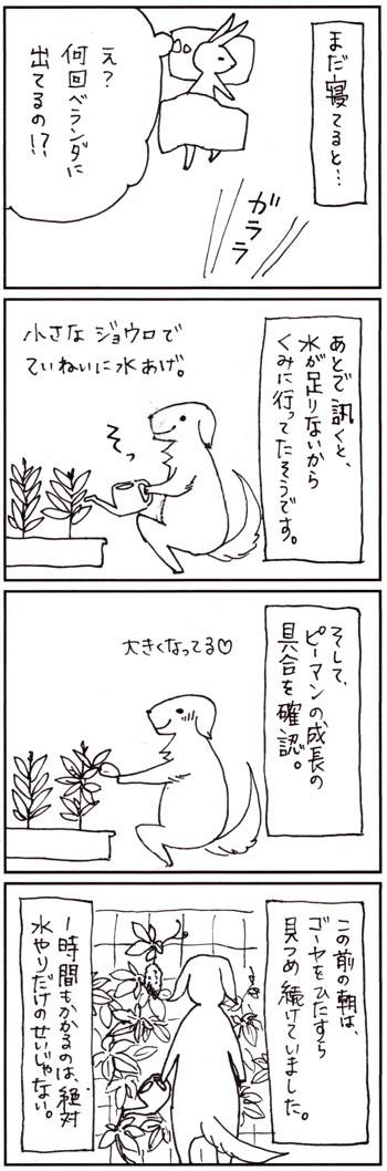 20120810_2_.jpg