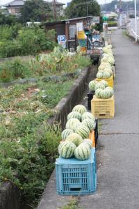 貴志川町にて
