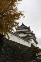 20121126 銀杏と和歌山城