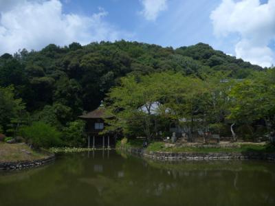聖天堂 池