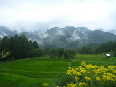 20120814 霧の郷高原雲海1