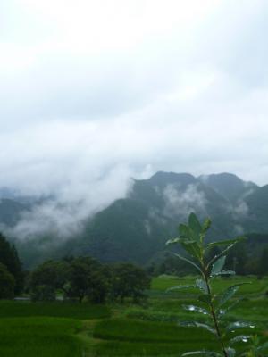 20120814 霧の郷高原雲海2