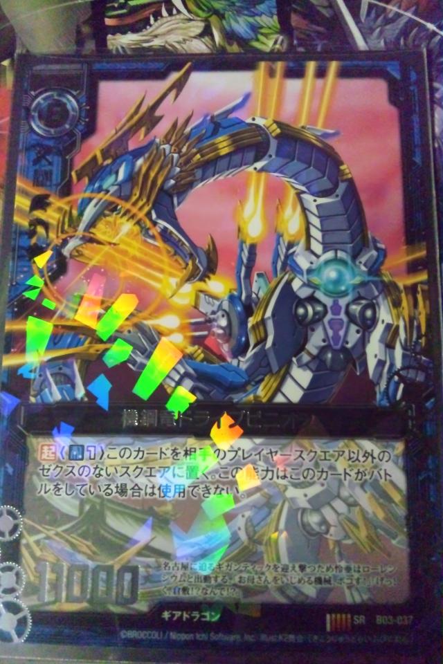 DSC_0091 (2)