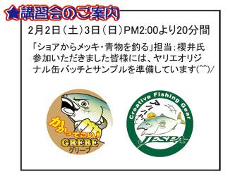 FSO1_20130124233322.jpg
