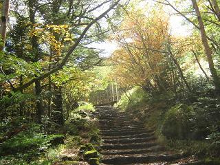 fujiyoshida131006-247.jpg