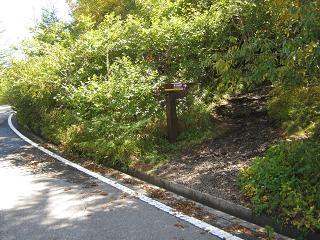 fujiyoshida131006-250.jpg