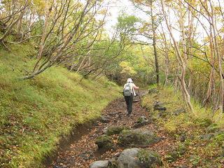 fujiyoshida131006-265.jpg