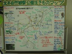 kitamoto130901-102.jpg