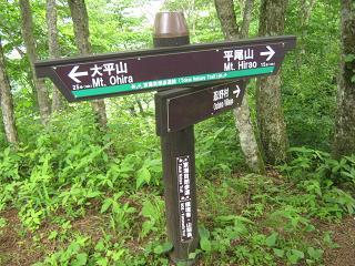 yamanakako130706-240.jpg