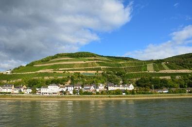 Rhein.jpg