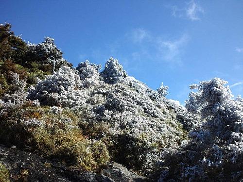 投石岳周辺霧氷