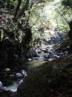 14.秋の渓
